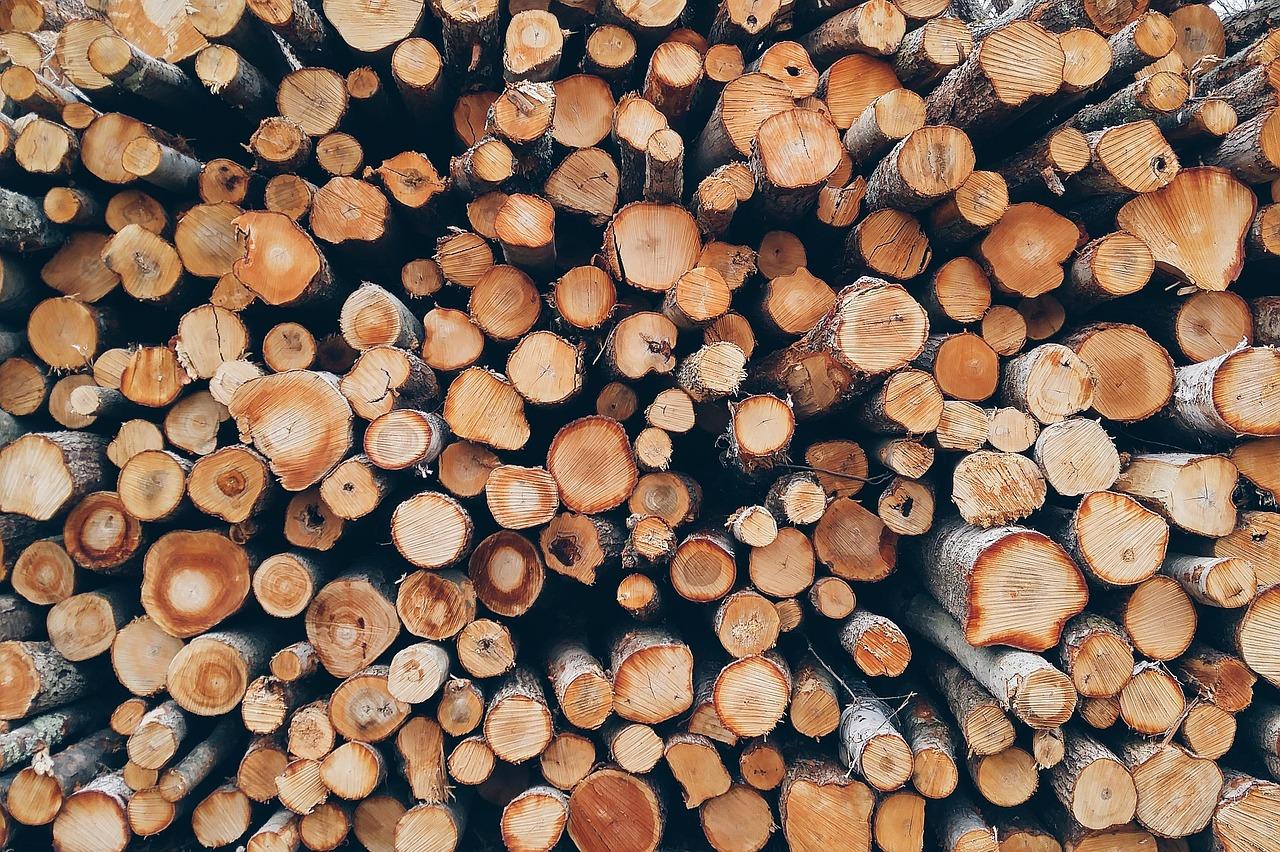 Le temps de séchage du bois de chauffage