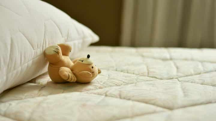Un professionnel à toulon pour éradiquer les punaises de lit
